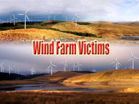 Wind Farm Victims
